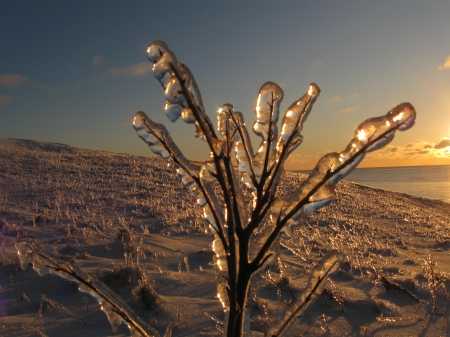 skiing-february-0971